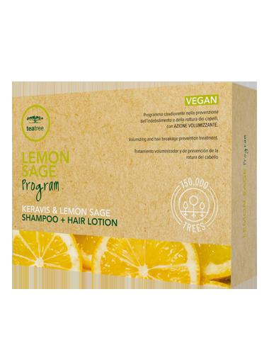 Paul Mitchell Tea Tree Lemon Sage Program 12 fiale + Lemon Sage Shampoo 300ml